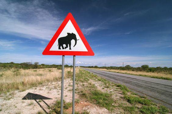 SEÑALES AFRICA (1)