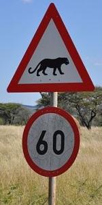 SEÑALES AFRICA (4)