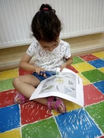 Actividades Infantil, English´s Fun, Salamanca (10)
